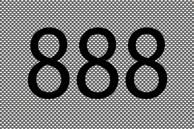 Business Name Numerology 8 8 8