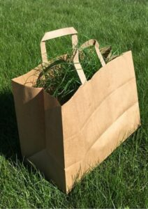 Green Marketing Paper Bag