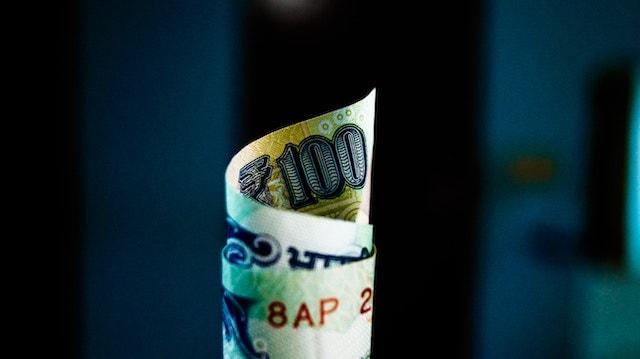 Website Design Services 100 Rupee Note