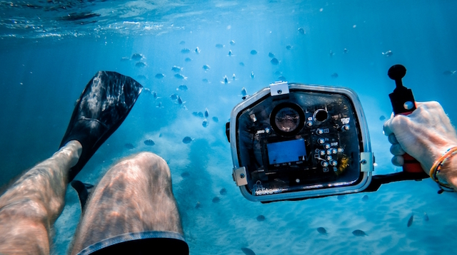 How to Start a Photography Blog Underwater